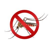 Segno di zanzara vettore