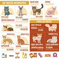 Insieme di infographics di gatti vettore