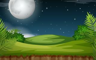 Scena all'aperto di notte vettore