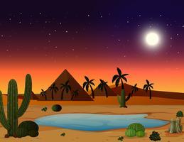 Una scena nel deserto di notte vettore