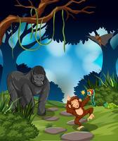 Scimmia nella foresta pluviale vettore