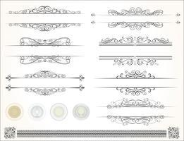 design calligrafico vettore