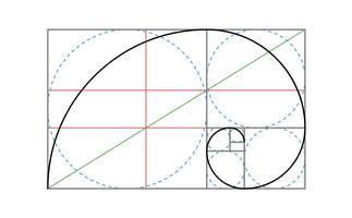 Modello di disegno vettoriale Golden Ratio
