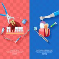 Banner dentista verticale vettore