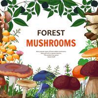 Sfondo di funghi selvatici della foresta