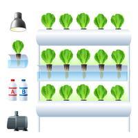 Set di icone del sistema di coltura idroponica vettore