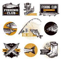 Emblemi di logo di pesca vettore