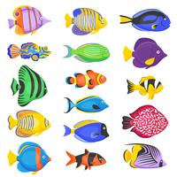Set di pesci esotici vettore