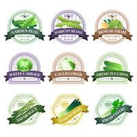 Set di etichette piatte di verdure ed erbe