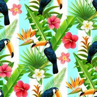 Modello senza cuciture piatto di Toucan della foresta pluviale