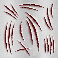 Set di graffi dell'artiglio