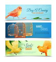 Set di banner di canarini e gabbie per uccelli vettore