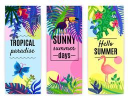 Collezione di banner verticali Paradise tropicale vettore