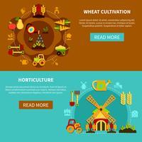 Raccolta di banner di coltivazione di grano