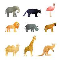 Set di icone poligonali di animali selvatici del sud
