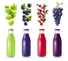 Bottiglie realistiche con set di succo di frutti di bosco