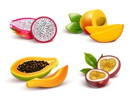 Insieme realistico di frutti tropicali vettore