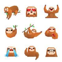 insieme poligonale bradipo