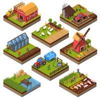 Insieme isometrico di composizioni agricole vettore