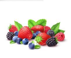 Composizione realistica di frutti di bosco