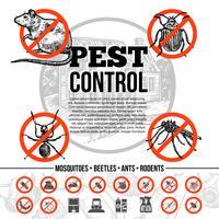 Infographics di controllo dei parassiti vettore
