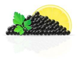 caviale nero con illustrazione vettoriale limone e prezzemolo