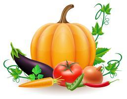 la zucca e l'autunno raccolgono l'illustrazione di vettore delle verdure