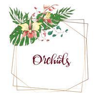 Cornice geometrica di disegno floreale. Orchidea, eucalipto, verde. Carta di nozze
