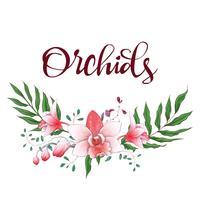 Cornice di design floreale. Orchidea, eucalipto, verde. Carta di nozze
