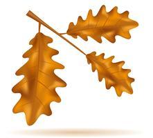 foglie di quercia autunnale illustrazione vettoriale