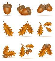 metta le ghiande della quercia di autunno delle icone con l'illustrazione di vettore delle foglie