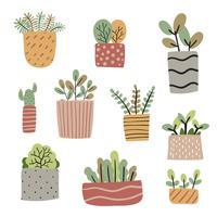 piante in vaso disegno vettoriale di raccolta