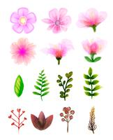 Set floreale vettoriale. Collezione floreale colorato con foglie e fiori, disegno acquerello.