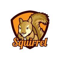 logo scoiattolo isolato su sfondo bianco vettore