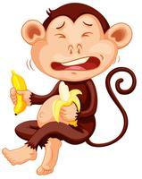 Scimmia che tiene banana piangendo vettore