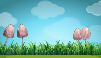 Scena con funghi nel campo vettore