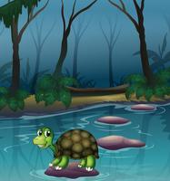 Una tartaruga al lago vettore