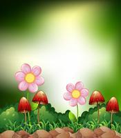 Funghi e fiori vettore