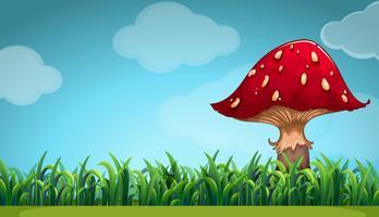 Scena con funghi in giardino vettore