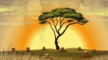 Scena di deforestazione con fumo nel campo