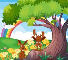 Animali selvaggi giocosi sotto il grande albero