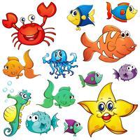 Diverse creature marine