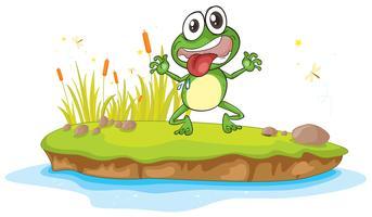 una rana e un'acqua vettore