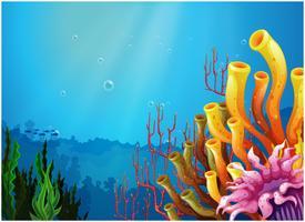 Coralli sotto il mare vettore