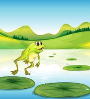 Un laghetto con una rana che salta vettore
