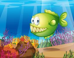 Un piranha verde vettore