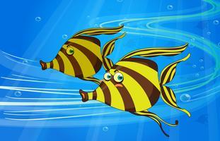 un pesce vettore