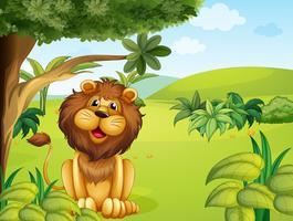 Un leone vicino al grande albero