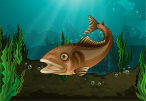 Pesce sott'acqua vettore