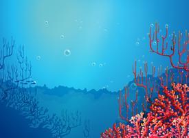 Bellissimi coralli sotto il mare vettore